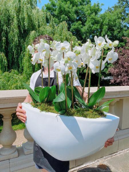 Contract Florist, Large Orchid Arrangement
