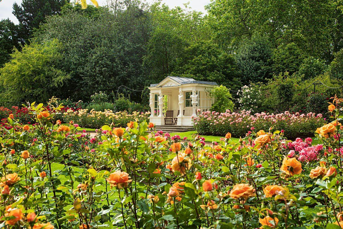 Buckingham Palace Royal Gardens